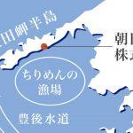 佐田岬の鬼・福島大朝さんの40億しらすを通販と食堂で@しらすパーク